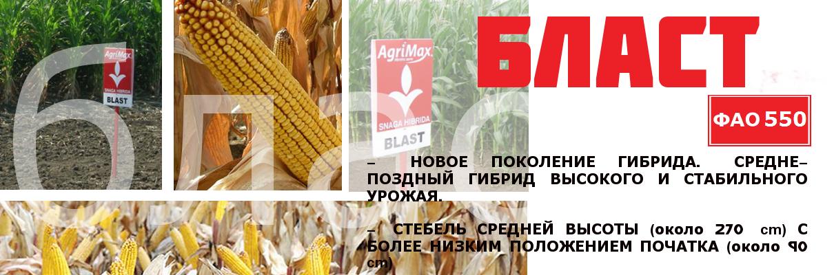 6blast-rus